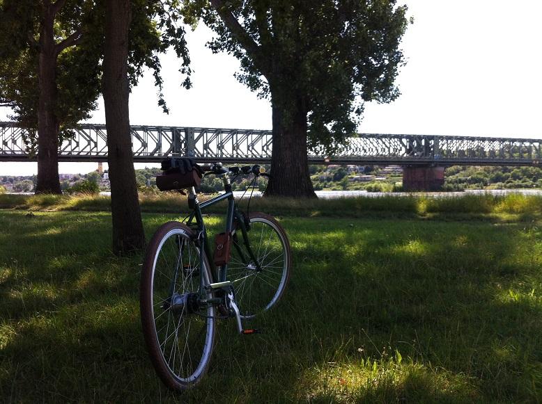 Fahard auf einer Wiese im Hintergrund eine Brücke