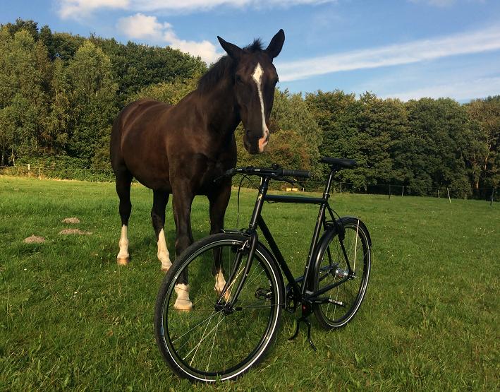 schwarzes Herrenrad auf einer koppel mit braunem Pferd im Hintergrund