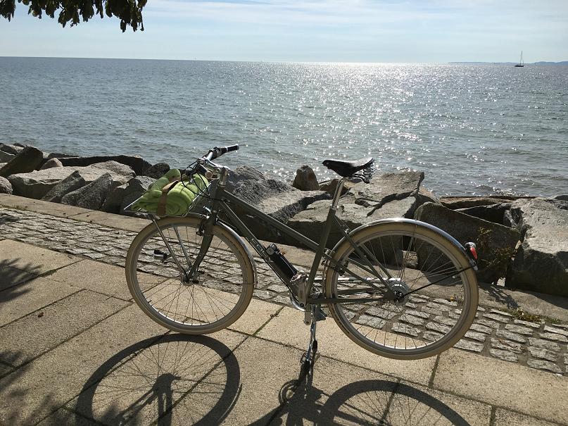 Taube farbendes Damenrad mit Wasser im Hintergrund