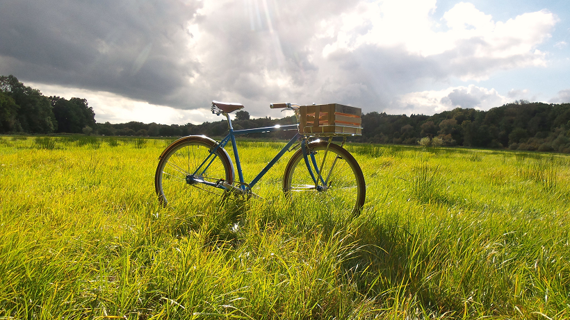 Blaues Herren-Rad mit Holzkiste als Korb steht auf einer grünen Wiese durch den Ramen des Fahrrades strahlt die Sonne