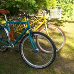 Fahrrad in Zinkgelb (1)