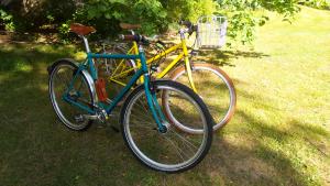 Fahrrad in Zinkgelb (RAL 1018)