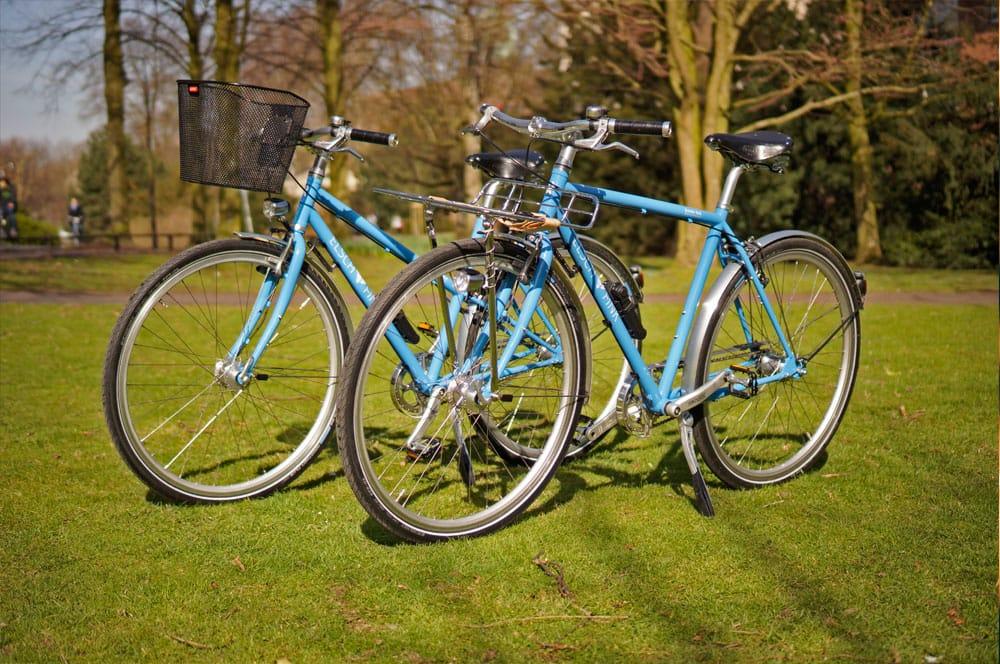 Citybike Damen und Herren in blau auf einer Wiese