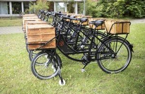 Lastenfahrräder in schwarz mit Holzkiste