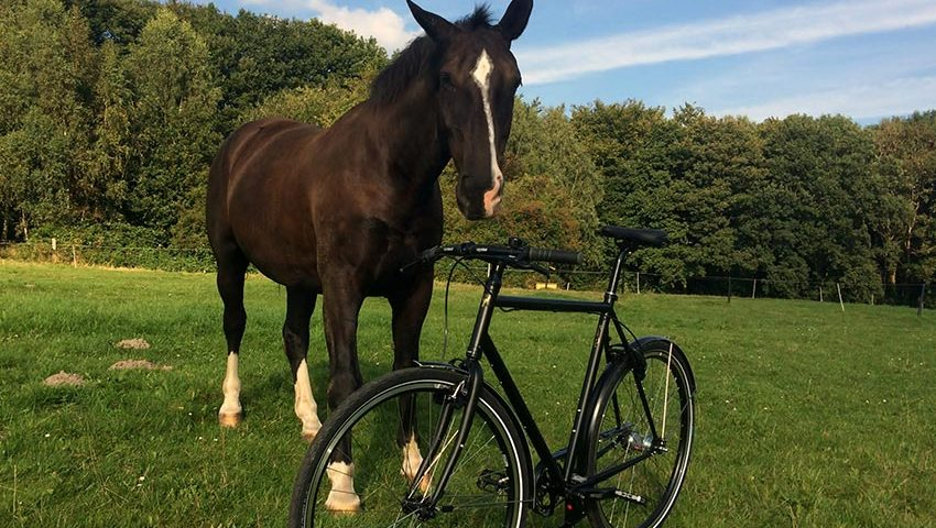 Ganz schwarzes Stahlrahmen Fahrrad. Ausgestattet mit einer 2 Gang Sram Automatix. Auf dem Bild ist das schwarze Trekkingrad gemeinsam mit einem Pferd abgebildet.