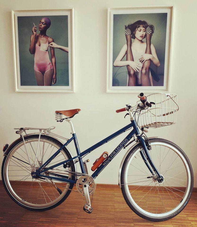 Stahlrahmen Fahrrad Damen mit 8-Gang Shimano Nexus Premium. Einem edlen Brooks Sattel B67 S in honey, Brooks Korb Hoxton, Ledergriffen von Sella Berolinum und Fahrradschloss von Trelock FS 380 Manufaktur..